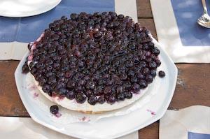Cheese-Cake aux myrtilles